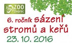 Ilustrační fotografie k článku 6. ročník Den stromů