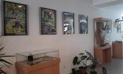 """Výstava """"Afrika-země protikladů"""""""