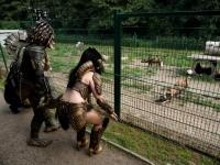 Křtiny psů hyenových